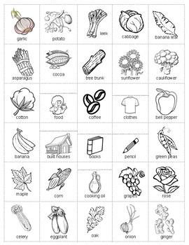 Plants Parts Sort booklet - Put Plant Parts Together and Center