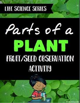 Plants: Parts of a Plant FREE Activity - Fruit and Seed Ob