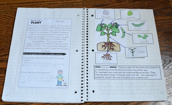 Plants: Parts of a Plant Interactive Notebook - Life Science Series