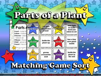 Plants Parts Of A Plant Matching Game Sort By King Virtue Tpt