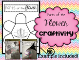 Plants: Parts of the Flower CRAFTIVITY