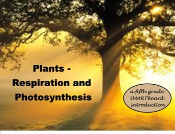 Plants - Photosynthesis and Respiration - A Fifth Grade SM