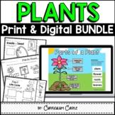 Plants: Plant Life Cycle Print & Digital Activities BUNDLE