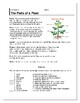 Plants/ Plant Parts/ Seed Growing Activity