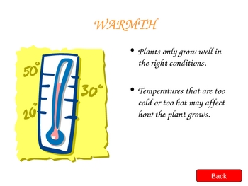 Plants, Plant parts, and plant needs PowerPoint lesson