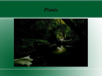 Plants Power Point