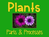 Plants Living Systems 4.4 Power Point