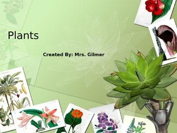 Plants PowerPoint