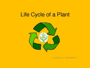 Plants PowerPoint, Life Cycle and Parts of a Plant Lesson