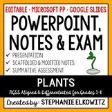 Plants PowerPoint, Notes & Exam