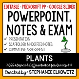 Plants PowerPoint, Notes & Exam