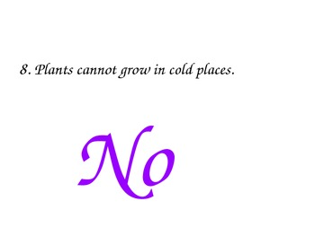 Plants - PowerPoint for Young Learners