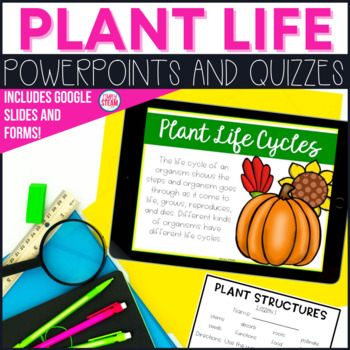 Plant Life Cycle and Environment PowerPoint Lessons