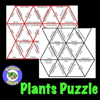 Plants Puzzle
