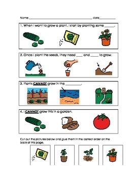 Plants Quizzes