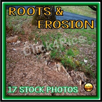 Photos of ROOTS and EROSION