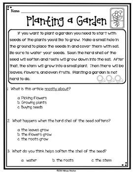 Plants Reading Comprehension