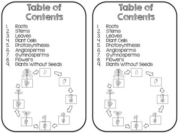 Plants Reading Passage Set with Coordinating Activities