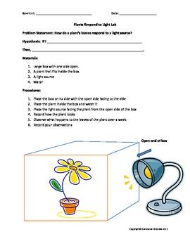 Plants Respond to Stimuli Lab 1 Light