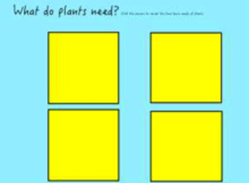Plants Review Flipchart