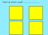 Plants Review Flipchart