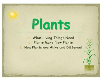 Plants Review Presentation - Compatible with Turning Point