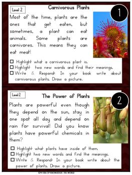 Plants Rocks Minerals Nonfiction Reading Passages