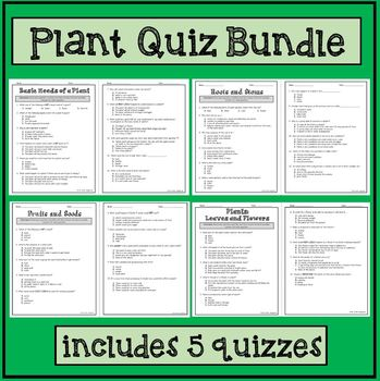 Plants: Roots, Stems, Leaves, Flowers, Fruits, Seed, Basic Needs and Uses.