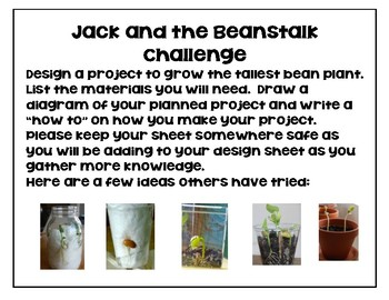Plants - STEM Challenge - Jack and the Beanstalk NGSS 2-LS2-1