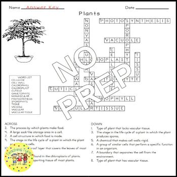 Plants Science Crossword Puzzle Coloring Worksheet Middle School
