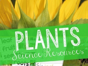 Plants: Science Resources Bundle