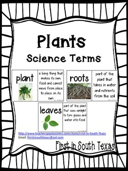 Plants Science Terms
