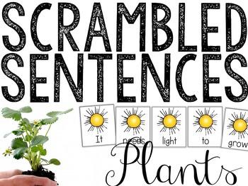 Plants Scrambled Sentences: Plant Parts & Needs