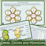 Plants & Seeds Distance Learning: Monocots & Dicots Intera