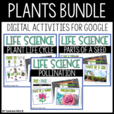Plants, Seeds, and Pollination Activities for Google Slides