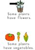 Plants Shared Reader, 2 Emergent Readers and Picture Cards