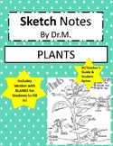 Plants Sketch Notes W/Teacher Guide, Notes & Student FIB!