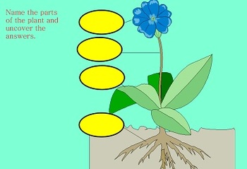 Plants SmartBoard Unit for Primary Grades