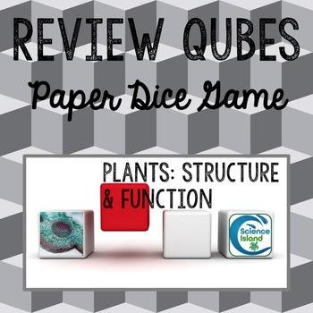 Plants: Structure & Function Review Qubes