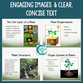 Plants: Structure and Function PowerPoint and Notes