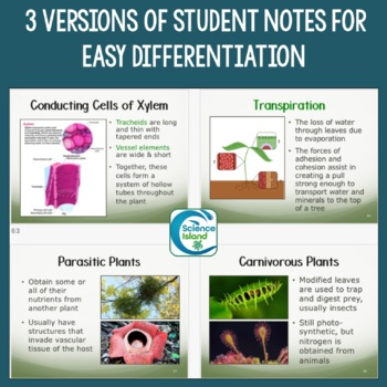 Plants: Structure and Function PowerPoint and Notes (Distance Learning)