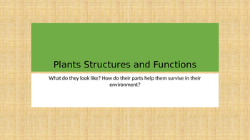 Plants Structures and Functions