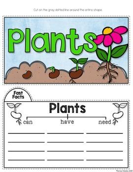 Plants Tab-Its®