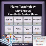 Plants Terminology -- Vocabulary Kinesthetic Review Game