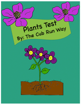 Plants Test and Study Guide for First Graders