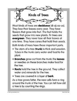 Plants: Trees