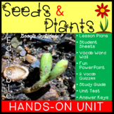 Seeds and Plants Hands-On Unit Plan 3L.2