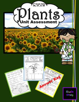 Plants Unit Assessment