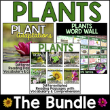Plants Unit *Bundle* ~ Differentiated Plants Reading Passages & Word Wall