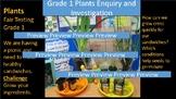 Plants Unit Fair Testing Investigation Grade 1 and Grade 2